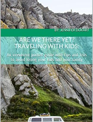 Are We There Yet? Traveling with youngsters: an pocket that is irreverent with... - Are We There Yet Traveling with Kids An irreverent pocket 314x410