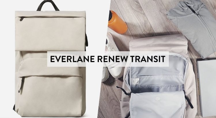 Everlane ReNew Transit Backpack Review - Everlane's Best Travel Ba...