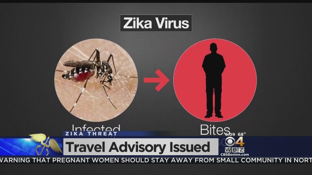 Logan Airport Travellers React To Zika Travel Advisory