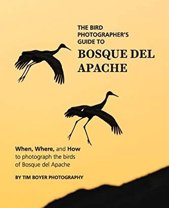 The Bird Photographer's Guide To Bosque del Apache: When, wherein, and H... - The Bird Photographers Guide To Bosque del Apache When Where 333x410