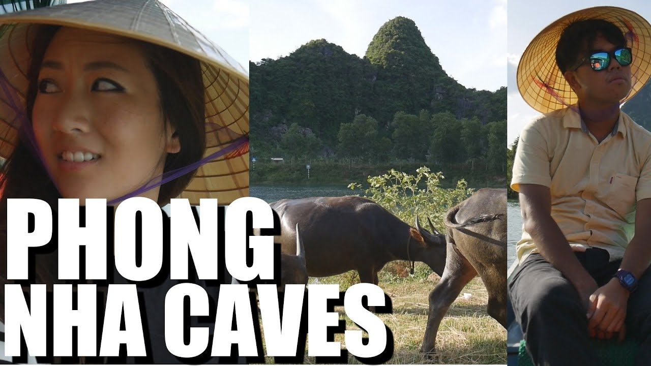 Vietnam CAVE TRAVEL Experience! Phong Nha National Park: Daily Vlog #...
